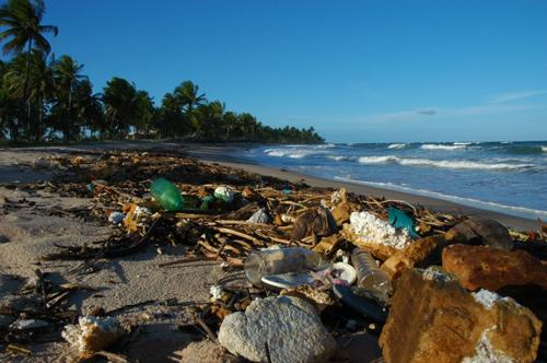 Costa do Dendê, Bahia. Foto: Global Garbage