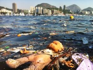 Projeto Ecobarreiras, que recolhe resíduos sólidos das águas, está em fase de expansão, segundo Inea. (Foto: Cristiano Trad/VC no G1)