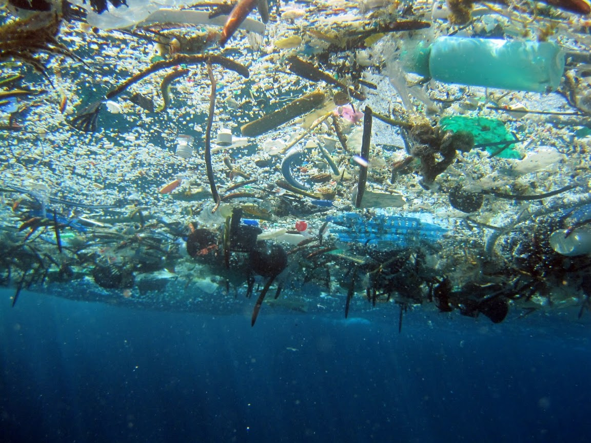 © NOAA Marine Debris Program