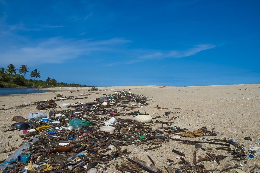 Costa do Dendê, litoral da Bahia. © Global Garbage Brasil